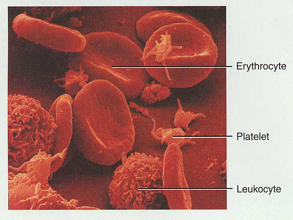 Hemoglobin Satu mol.