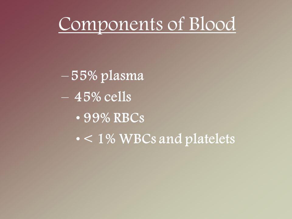 Imunoglobulin Plasma Disintesis dalam sel plasma.