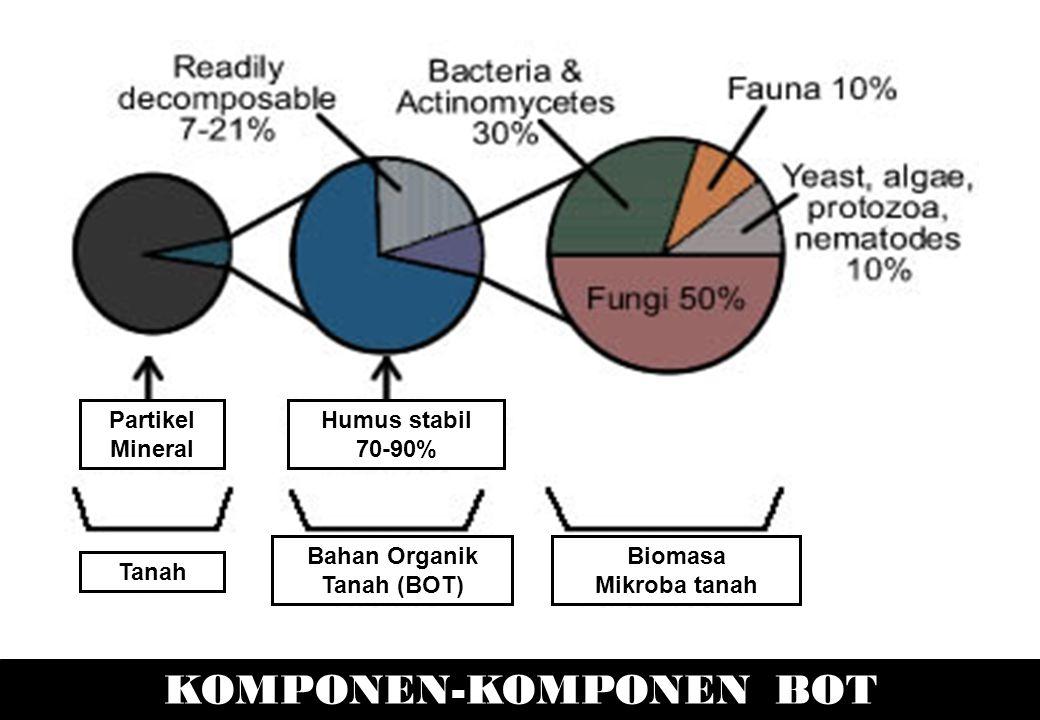 KOMPONEN-KOMPONEN BOT Biomasa Mikroba tanah Bahan Organik Tanah (BOT) Tanah Partikel Mineral Humus stabil 70-90%