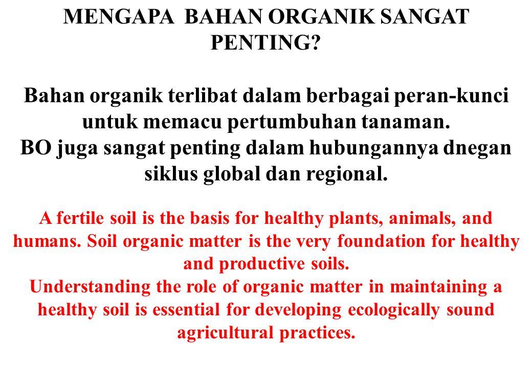 MENGAPA BAHAN ORGANIK SANGAT PENTING? Bahan organik terlibat dalam berbagai peran-kunci untuk memacu pertumbuhan tanaman. BO juga sangat penting dalam