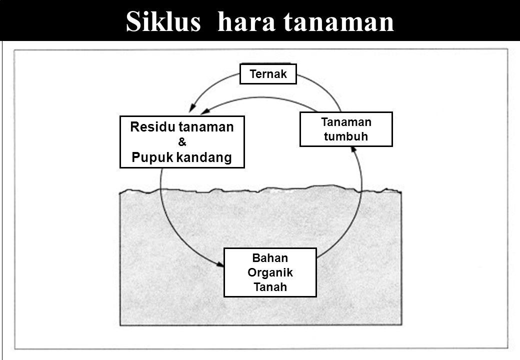 Siklus hara tanaman Tanaman tumbuh Bahan Organik Tanah Residu tanaman & Pupuk kandang Ternak