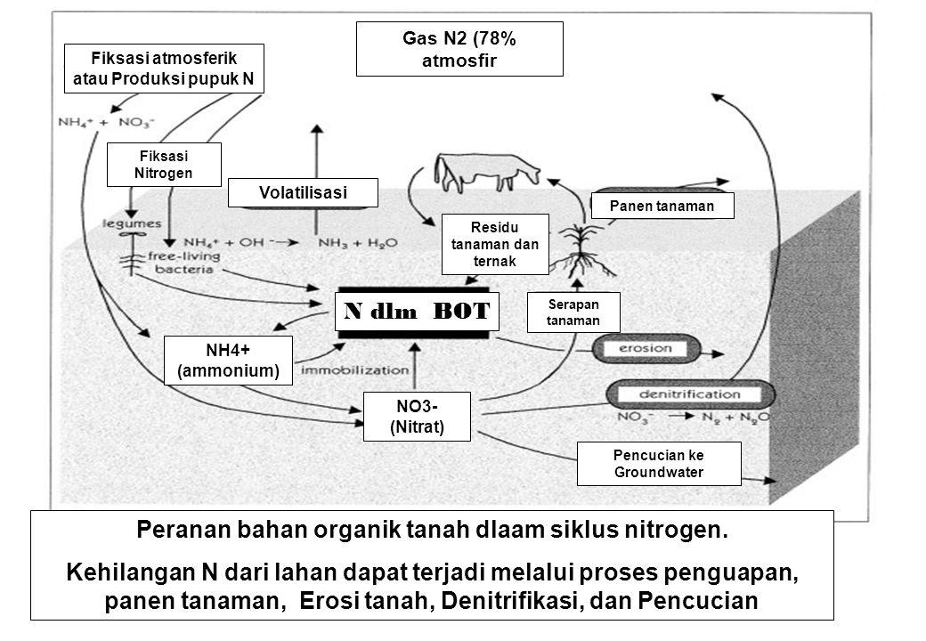 Peranan bahan organik tanah dlaam siklus nitrogen. Kehilangan N dari lahan dapat terjadi melalui proses penguapan, panen tanaman, Erosi tanah, Denitri