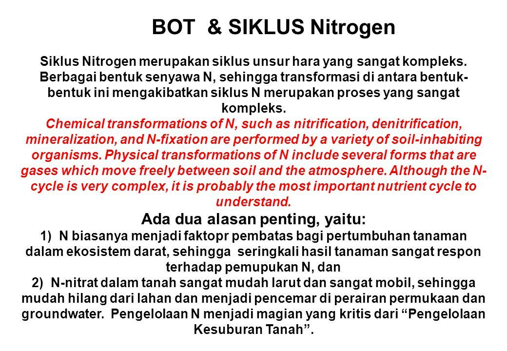BOT & SIKLUS Nitrogen Siklus Nitrogen merupakan siklus unsur hara yang sangat kompleks. Berbagai bentuk senyawa N, sehingga transformasi di antara ben