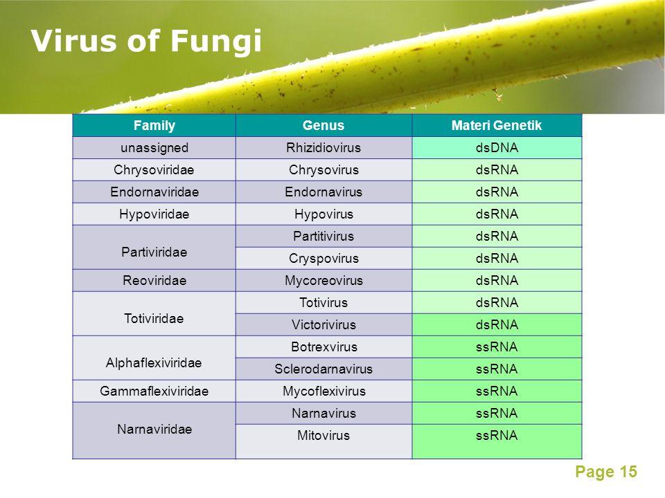 Page 15 Virus of Fungi FamilyGenusMateri Genetik unassignedRhizidiovirusdsDNA ChrysoviridaeChrysovirusdsRNA EndornaviridaeEndornavirusdsRNA Hypovirida
