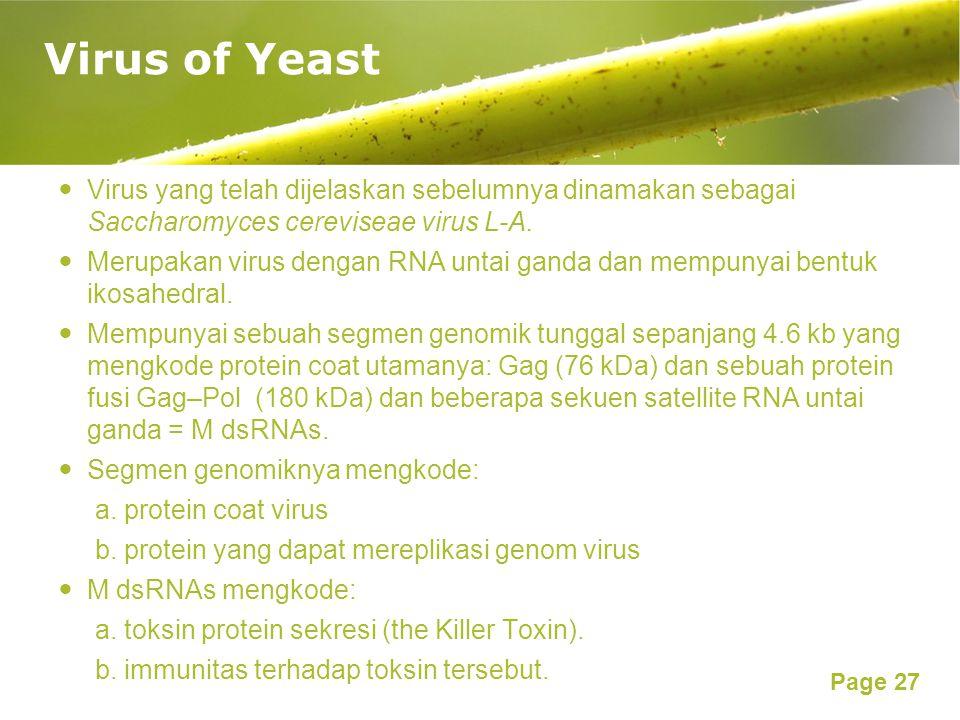 Page 27 Virus yang telah dijelaskan sebelumnya dinamakan sebagai Saccharomyces cereviseae virus L-A.