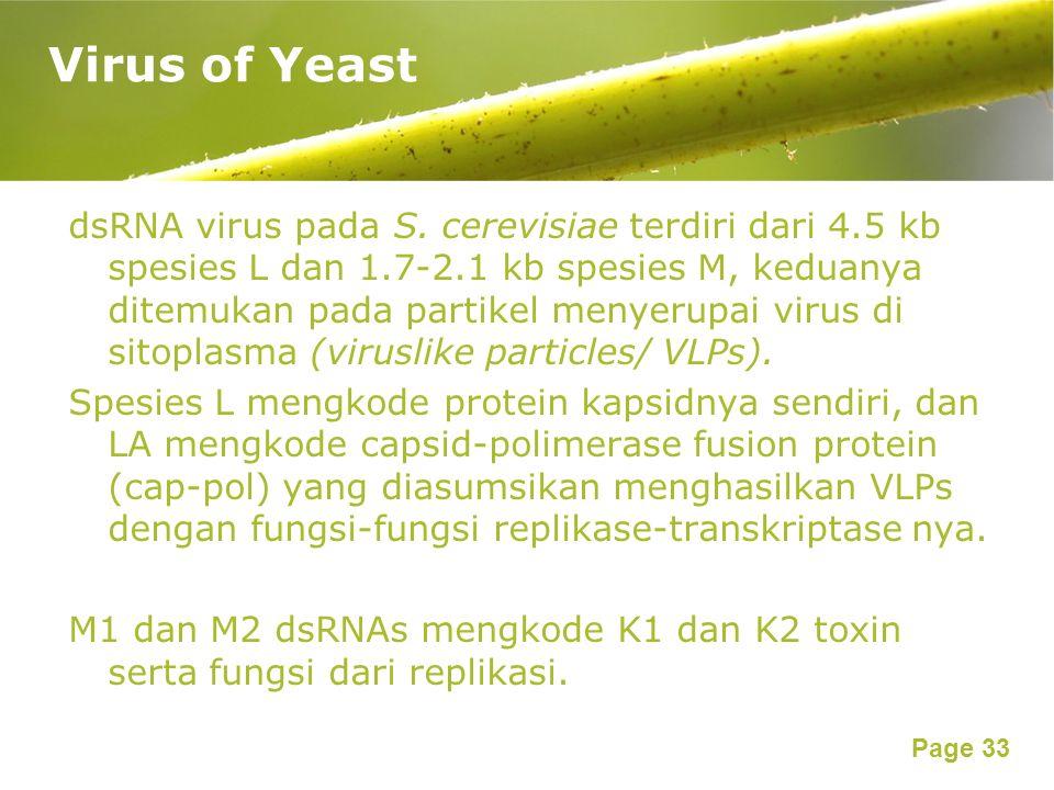 Page 33 dsRNA virus pada S.