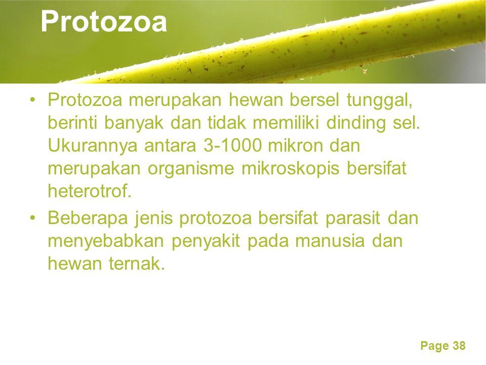 Page 38 Protozoa Protozoa merupakan hewan bersel tunggal, berinti banyak dan tidak memiliki dinding sel. Ukurannya antara 3-1000 mikron dan merupakan