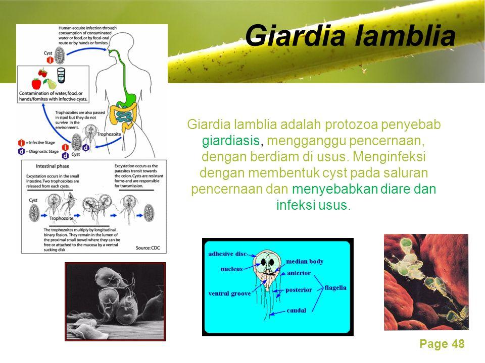 Page 48 Giardia lamblia Giardia lamblia adalah protozoa penyebab giardiasis, mengganggu pencernaan, dengan berdiam di usus.