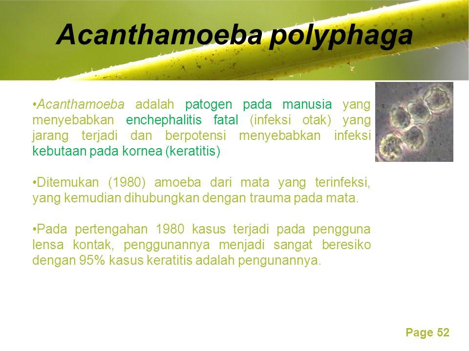 Page 52 Acanthamoeba polyphaga Acanthamoeba adalah patogen pada manusia yang menyebabkan enchephalitis fatal (infeksi otak) yang jarang terjadi dan berpotensi menyebabkan infeksi kebutaan pada kornea (keratitis) Ditemukan (1980) amoeba dari mata yang terinfeksi, yang kemudian dihubungkan dengan trauma pada mata.
