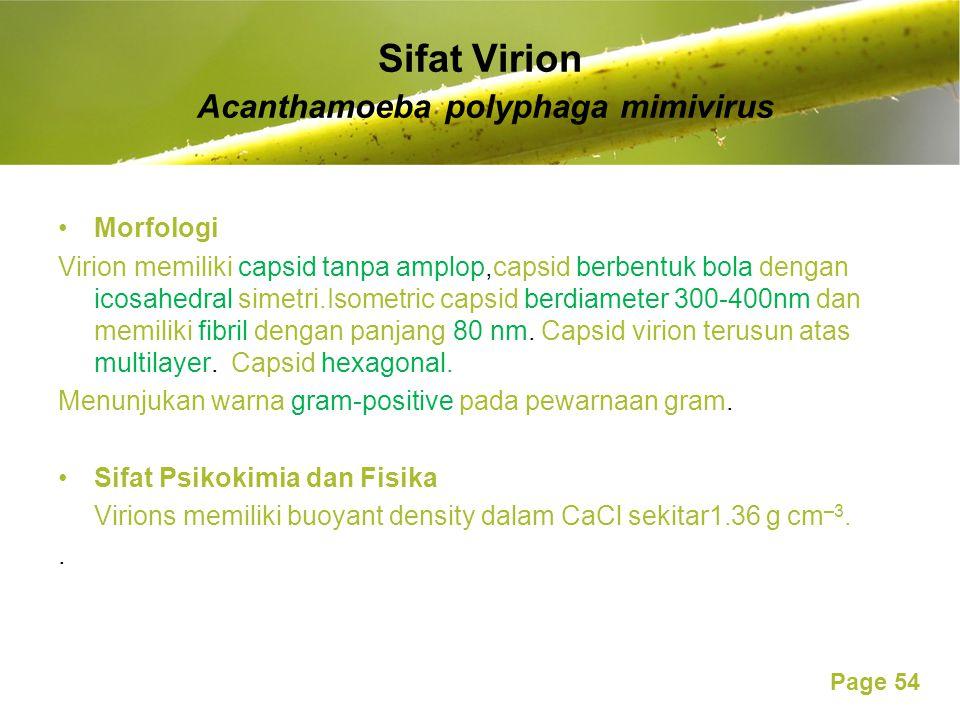 Page 54 Sifat Virion Acanthamoeba polyphaga mimivirus Morfologi Virion memiliki capsid tanpa amplop,capsid berbentuk bola dengan icosahedral simetri.Isometric capsid berdiameter 300-400nm dan memiliki fibril dengan panjang 80 nm.