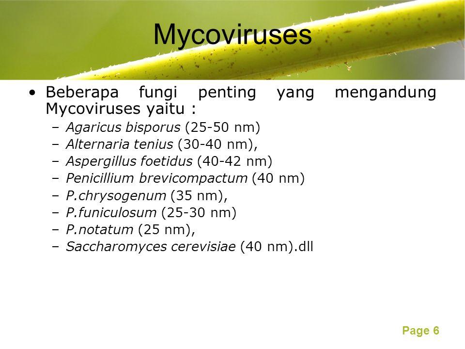 Page 6 Mycoviruses Beberapa fungi penting yang mengandung Mycoviruses yaitu : –Agaricus bisporus (25-50 nm) –Alternaria tenius (30-40 nm), –Aspergillus foetidus (40-42 nm) –Penicillium brevicompactum (40 nm) –P.chrysogenum (35 nm), –P.funiculosum (25-30 nm) –P.notatum (25 nm), –Saccharomyces cerevisiae (40 nm).dll