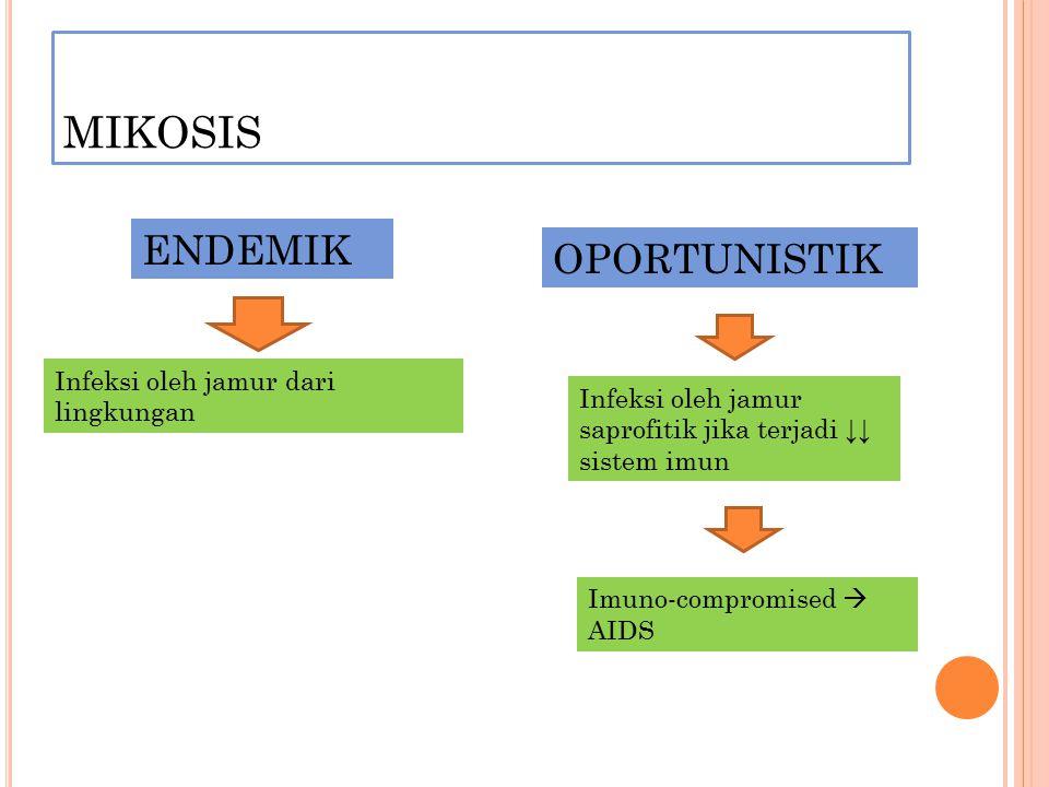 MIKOSIS ENDEMIK OPORTUNISTIK Infeksi oleh jamur dari lingkungan Infeksi oleh jamur saprofitik jika terjadi ↓↓ sistem imun Imuno-compromised  AIDS