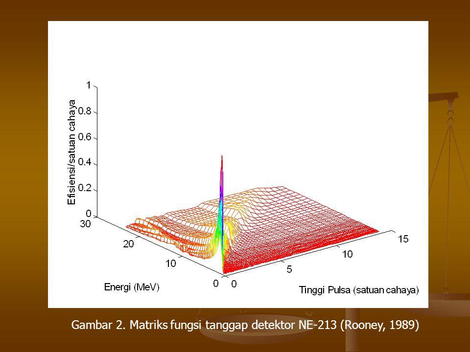 Gambar 2. Matriks fungsi tanggap detektor NE-213 (Rooney, 1989)