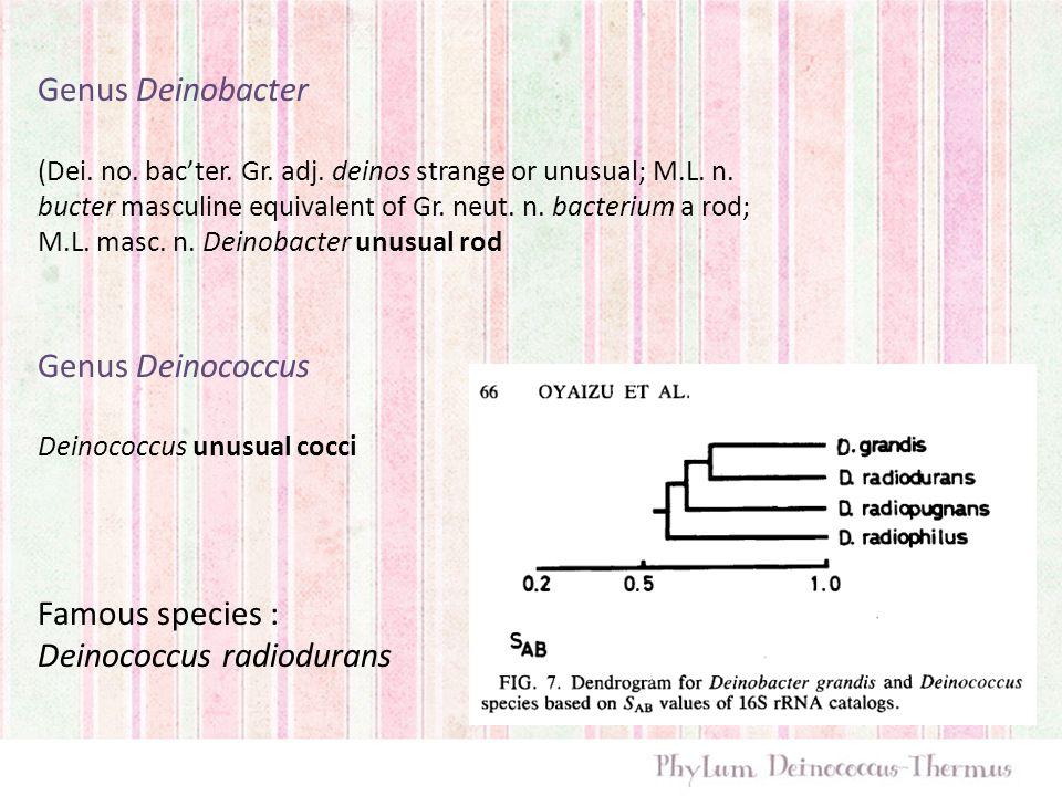 Genus Deinobacter (Dei. no. bac'ter. Gr. adj. deinos strange or unusual; M.L. n. bucter masculine equivalent of Gr. neut. n. bacterium a rod; M.L. mas