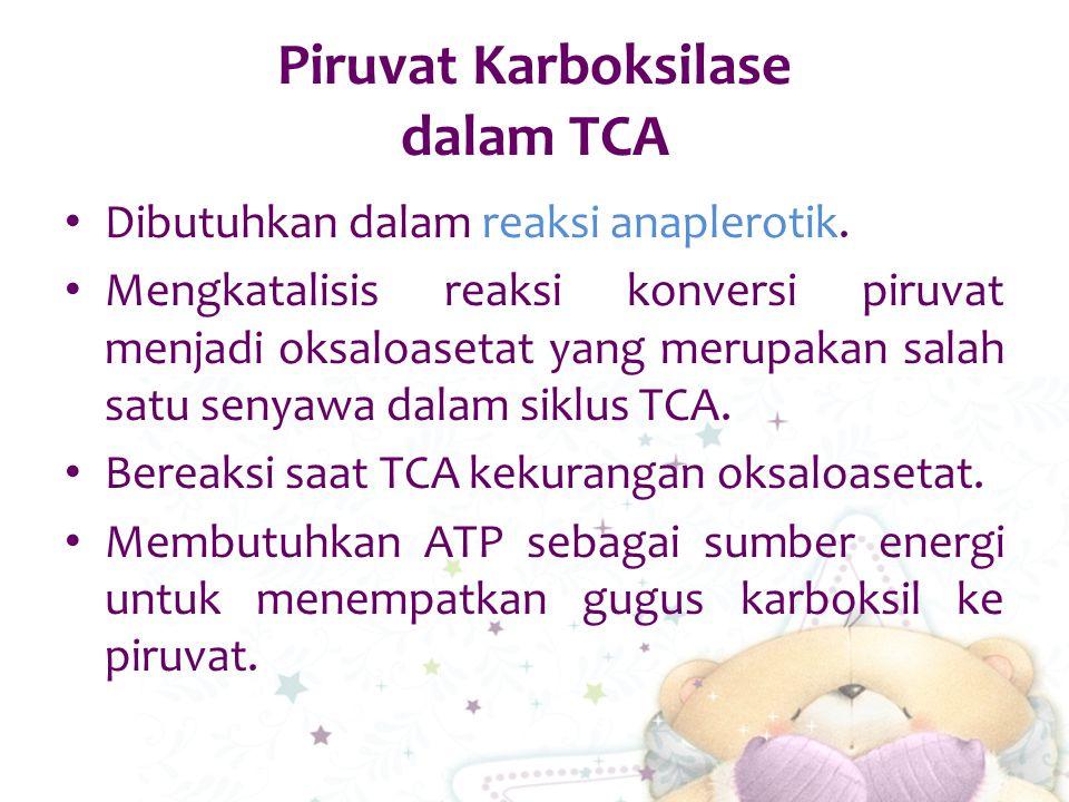 Piruvat Karboksilase dalam TCA Dibutuhkan dalam reaksi anaplerotik. Mengkatalisis reaksi konversi piruvat menjadi oksaloasetat yang merupakan salah sa