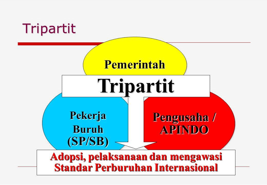 Tripartit Pekerja Buruh (SP/SB) Pekerja PemerintahPemerintah Pengusaha / APINDO Tripartit Adopsi, pelaksanaan dan mengawasi Standar Perburuhan Internasional