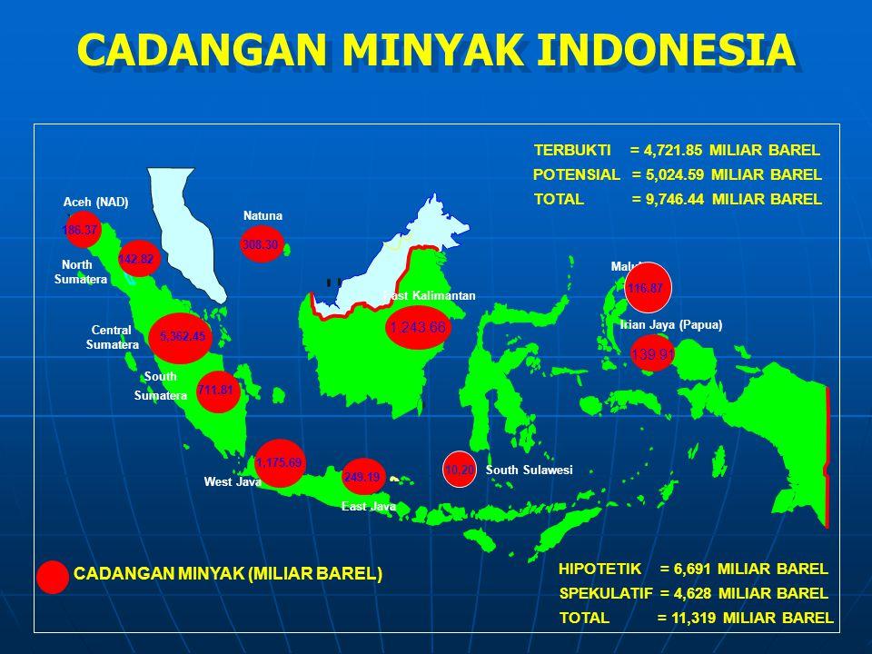 186.37 142.82 5,362.45 711.81 1,175.69 249.19 308.30 1,243.66 139.91 Aceh (NAD) Central Sumatera South Sumatera Irian Jaya (Papua) CADANGAN MINYAK (MI