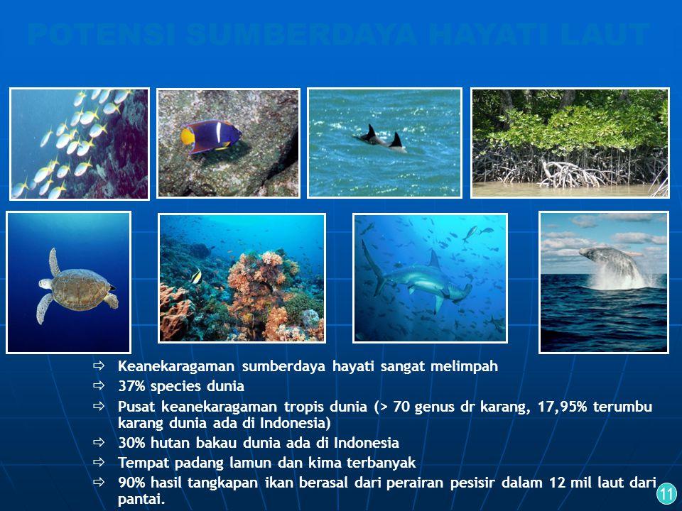 Keanekaragaman sumberdaya hayati sangat melimpah  37% species dunia  Pusat keanekaragaman tropis dunia (> 70 genus dr karang, 17,95% terumbu karan