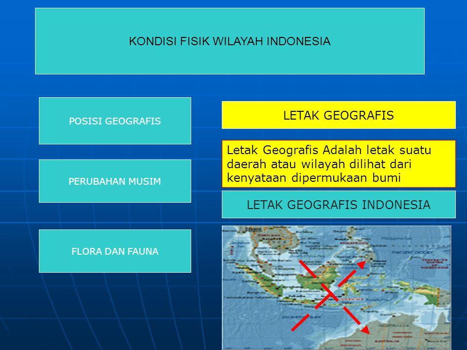 KONDISI FISIK WILAYAH INDONESIA POSISI GEOGRAFIS PERUBAHAN MUSIM FLORA DAN FAUNA LETAK GEOGRAFIS Letak Geografis Adalah letak suatu daerah atau wilaya