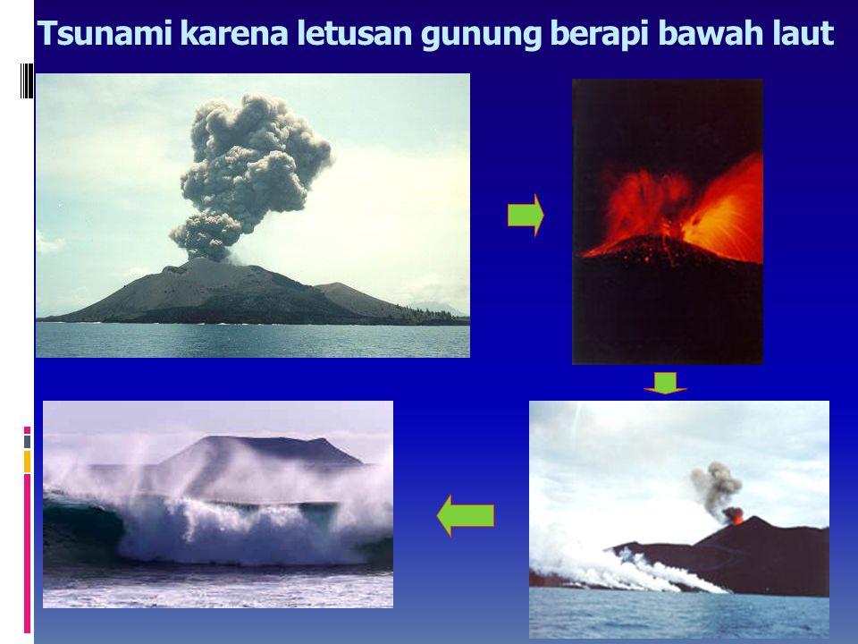 Penyebab tsunami (lanjutan…)  Tanah longsor yang terjadi di dasar laut serta runtuhan gunung api juga dapat mengakibatkan gangguan air laut yang dapa