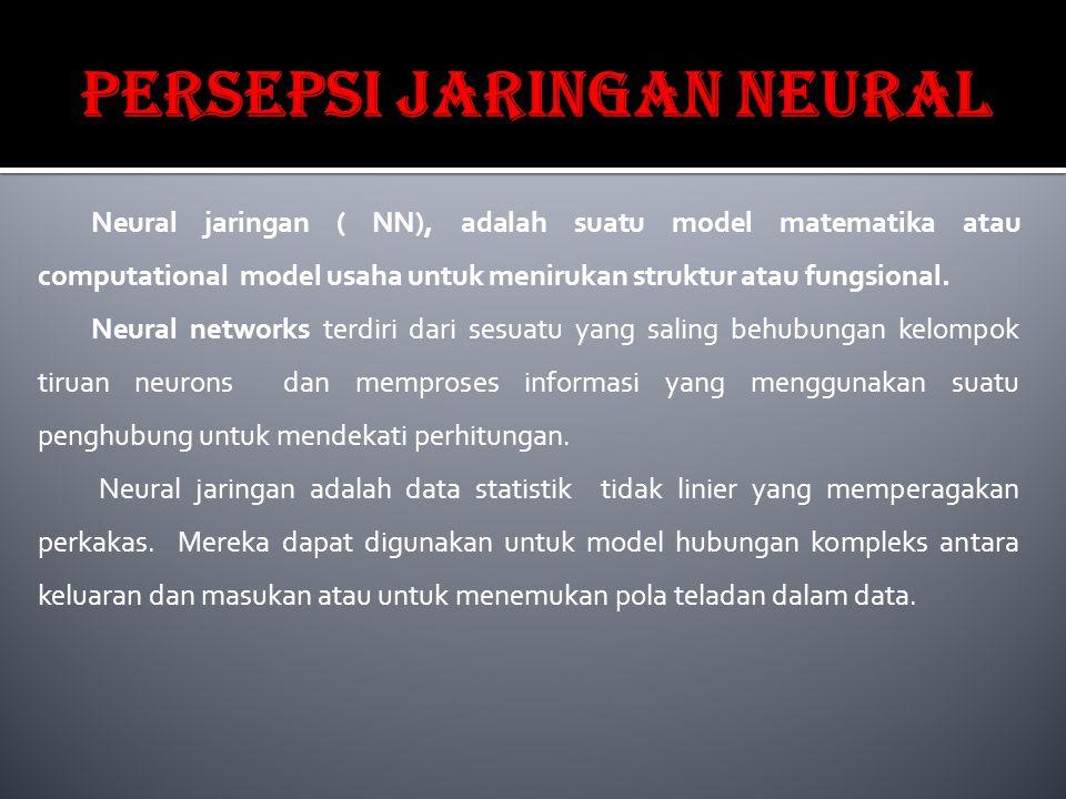 Neural jaringan ( NN), adalah suatu model matematika atau computational model usaha untuk menirukan struktur atau fungsional. Neural networks terdiri