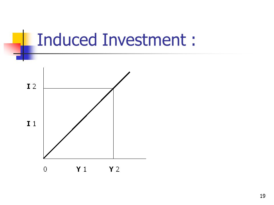 19 Induced Investment :