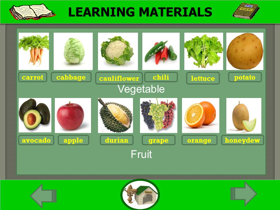 LEARNING MATERIALS Vegetable Fruit carrot cauliflower chili lettuce potatocabbage avocadoappleduriangrapeorangehoneydew