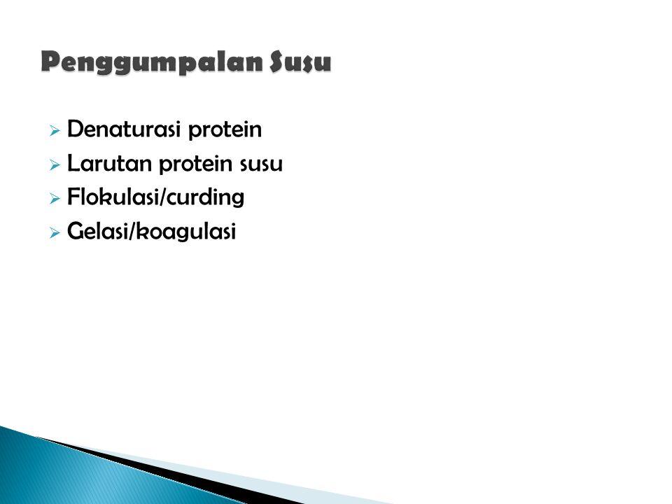  Denaturasi protein  Larutan protein susu  Flokulasi/curding  Gelasi/koagulasi