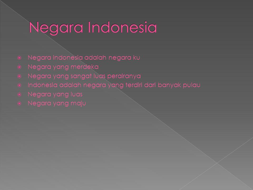  Negara indonesia adalah negara ku  Negara yang merdeka  Negara yang sangat luas perairanya  Indonesia adalah negara yang terdiri dari banyak pulau  Negara yang luas  Negara yang maju