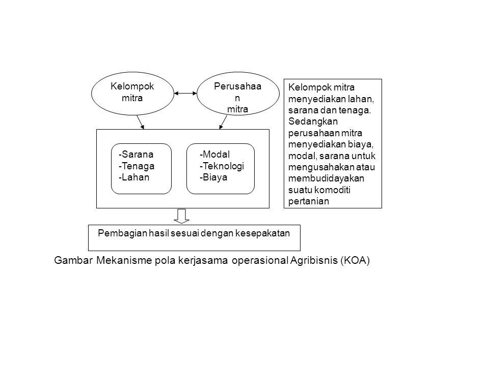 Kelompok mitra Perusahaa n mitra - Sarana - Tenaga - Lahan -Modal -Teknologi -Biaya Pembagian hasil sesuai dengan kesepakatan Kelompok mitra menyediak