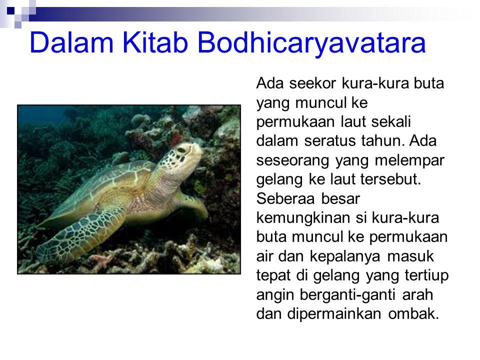 Dalam Kitab Bodhicaryavatara Ada seekor kura-kura buta yang muncul ke permukaan laut sekali dalam seratus tahun. Ada seseorang yang melempar gelang ke