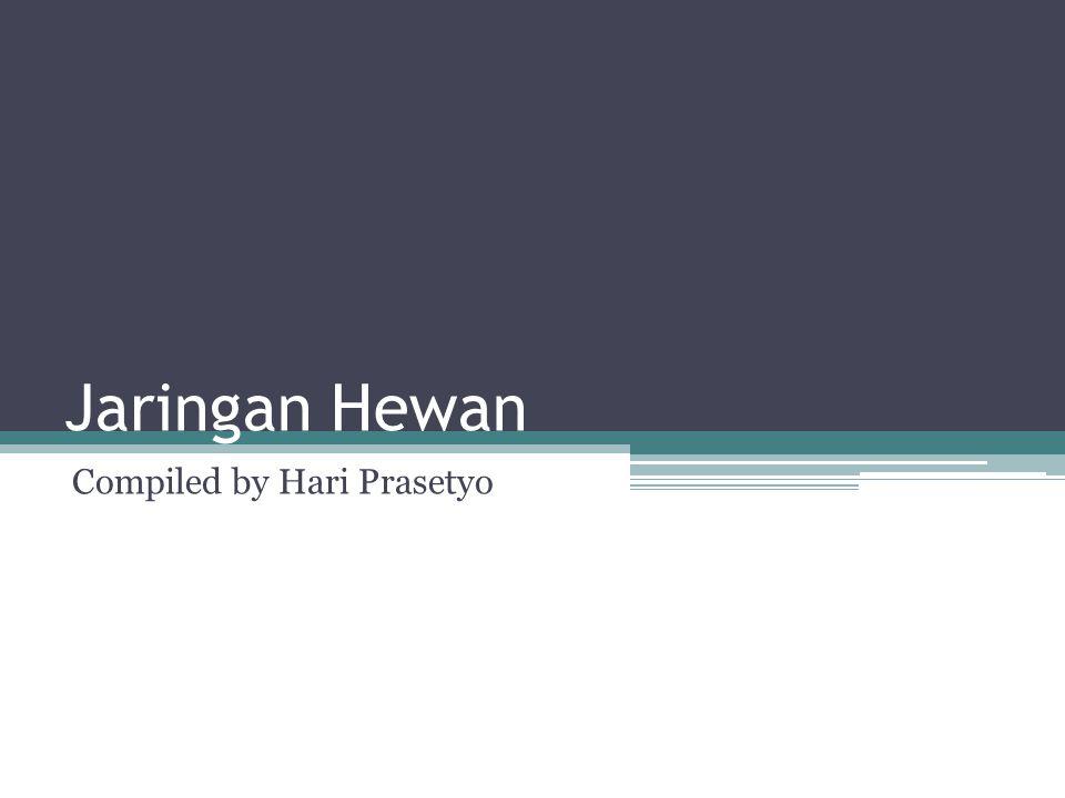 Jaringan Hewan Compiled by Hari Prasetyo