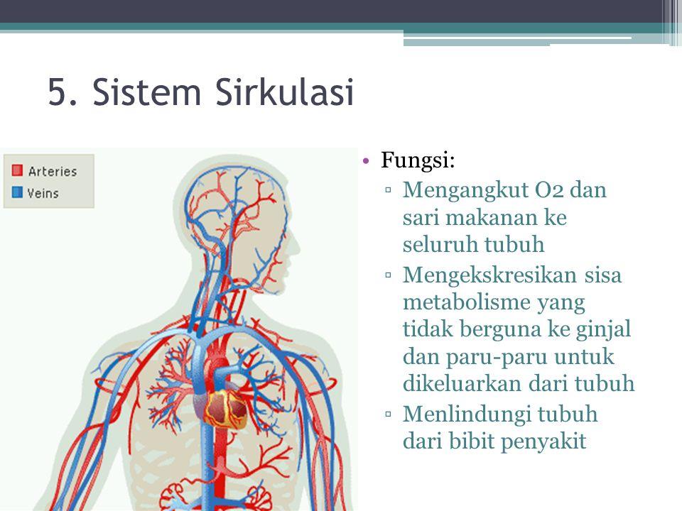 5. Sistem Sirkulasi Fungsi: ▫Mengangkut O2 dan sari makanan ke seluruh tubuh ▫Mengekskresikan sisa metabolisme yang tidak berguna ke ginjal dan paru-p