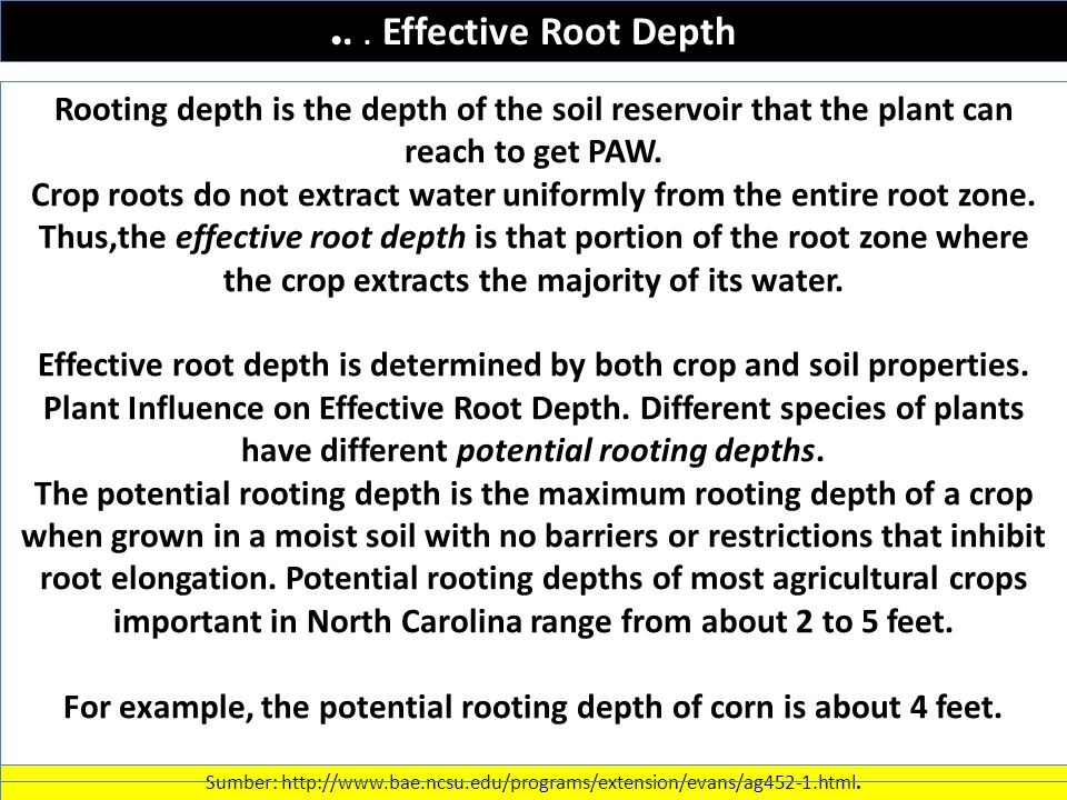 ... Effective Root Depth Sumber: http://www.bae.ncsu.edu/programs/extension/evans/ag452-1.html.