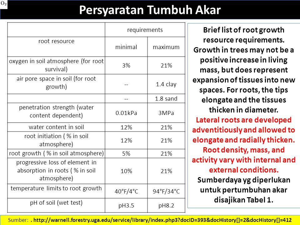 Persyaratan Tumbuh Akar Brief list of root growth resource requirements.