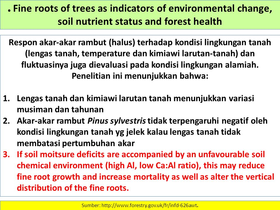 Fine roots of trees as indicators of environmental change, soil nutrient status and forest health Sumber: http://www.forestry.gov.uk/fr/infd-626awt.