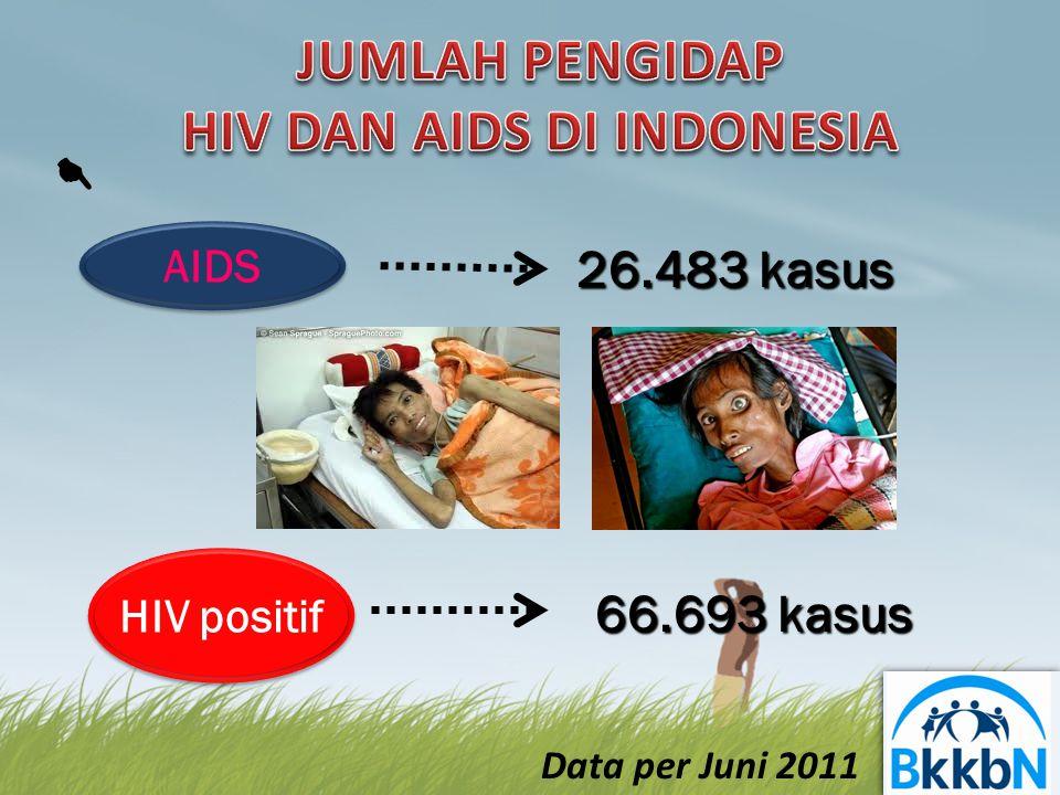 26.483 kasus 26.483 kasus 66.693 kasus 66.693 kasus AIDS HIV positif  Data per Juni 2011