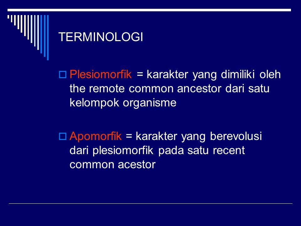 TERMINOLOGI  Plesiomorfik = karakter yang dimiliki oleh the remote common ancestor dari satu kelompok organisme  Apomorfik = karakter yang berevolus