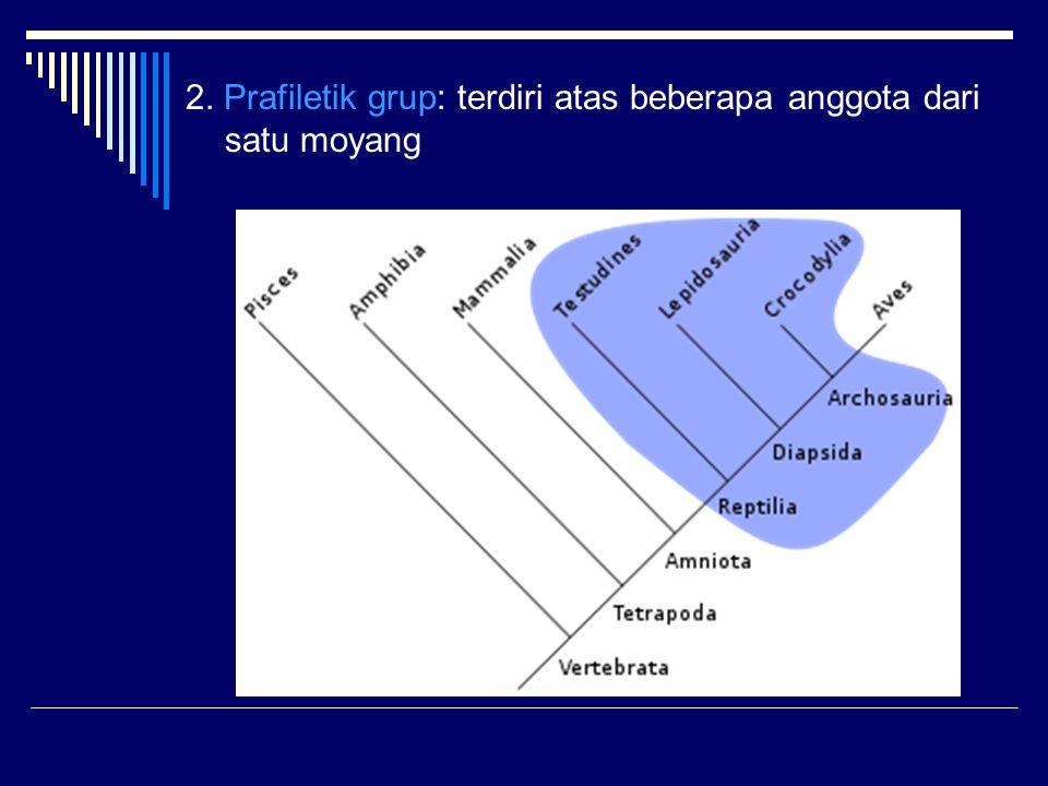 2. Prafiletik grup: terdiri atas beberapa anggota dari satu moyang