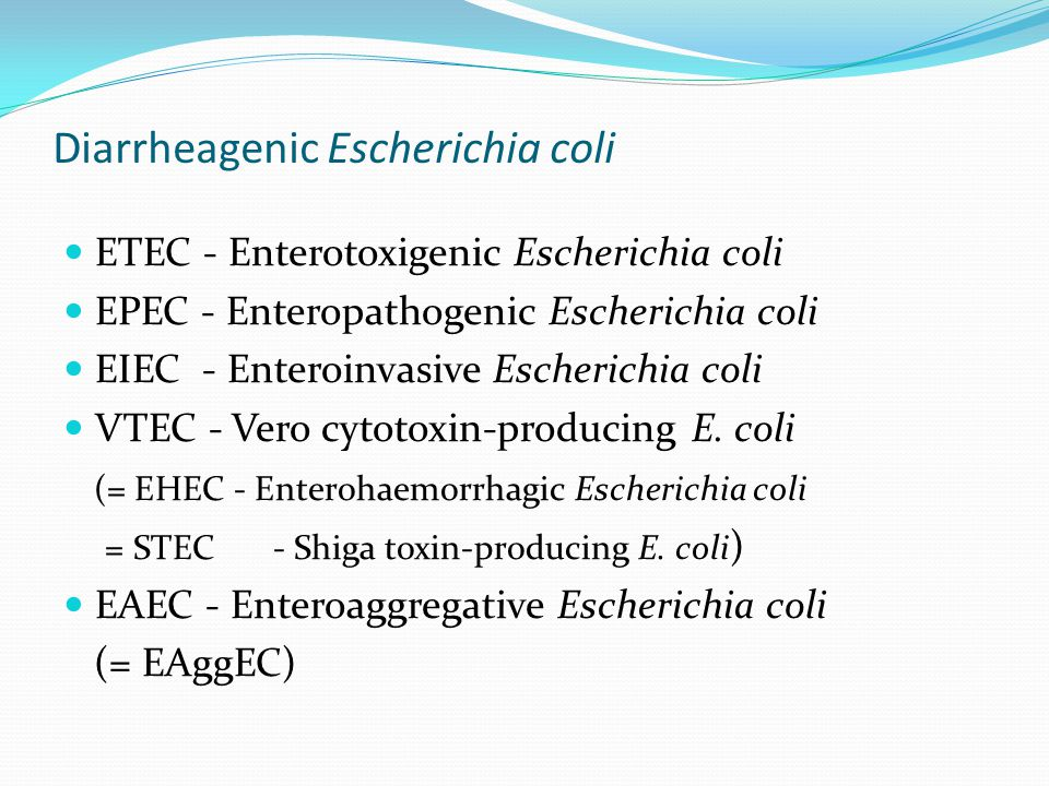 Diarrheagenic Escherichia coli ETEC - Enterotoxigenic Escherichia coli EPEC - Enteropathogenic Escherichia coli EIEC - Enteroinvasive Escherichia coli