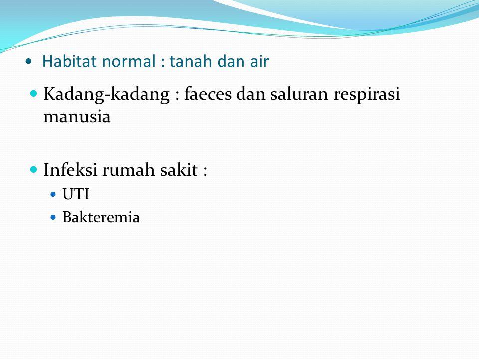 Habitat normal : tanah dan air Kadang-kadang : faeces dan saluran respirasi manusia Infeksi rumah sakit : UTI Bakteremia