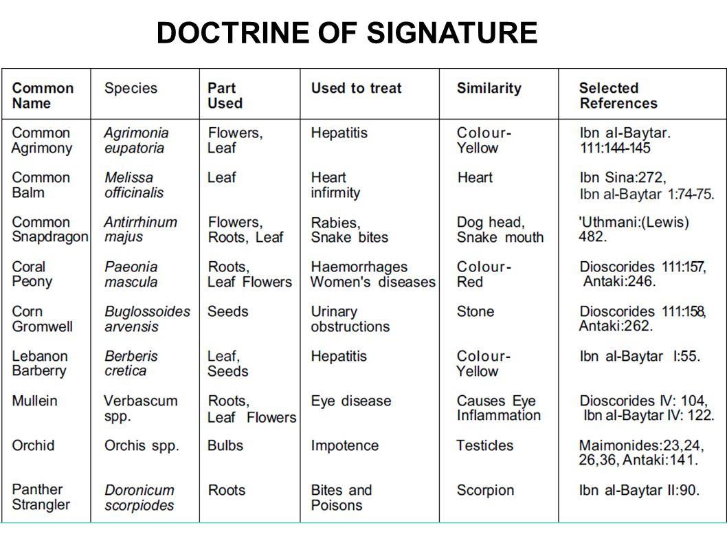 DOCTRINE OF SIGNATURE OF PLANT ORIGIN DOCTRINE OF SIGNATURE