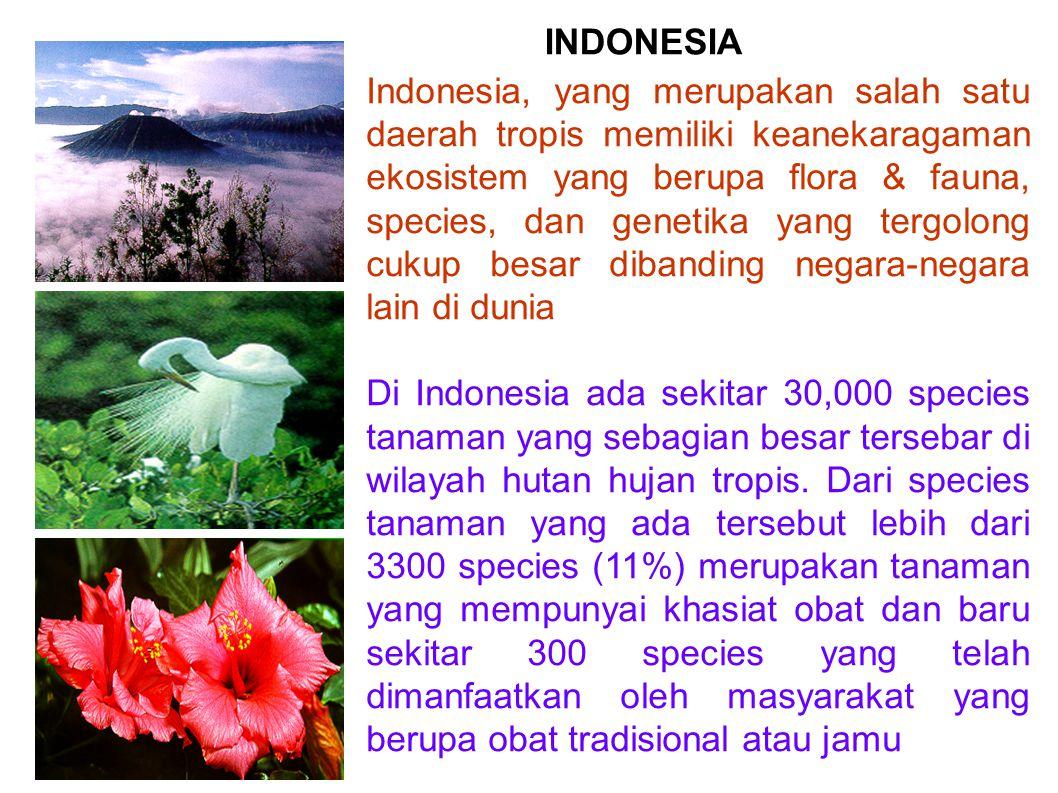 Indonesia, yang merupakan salah satu daerah tropis memiliki keanekaragaman ekosistem yang berupa flora & fauna, species, dan genetika yang tergolong c