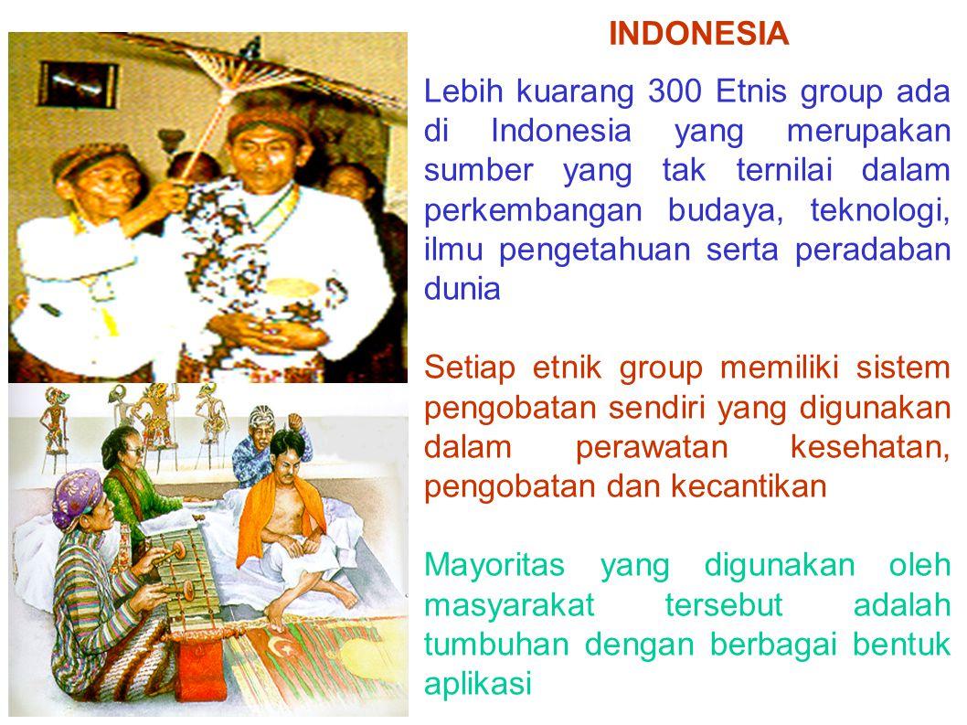 Lebih kuarang 300 Etnis group ada di Indonesia yang merupakan sumber yang tak ternilai dalam perkembangan budaya, teknologi, ilmu pengetahuan serta pe