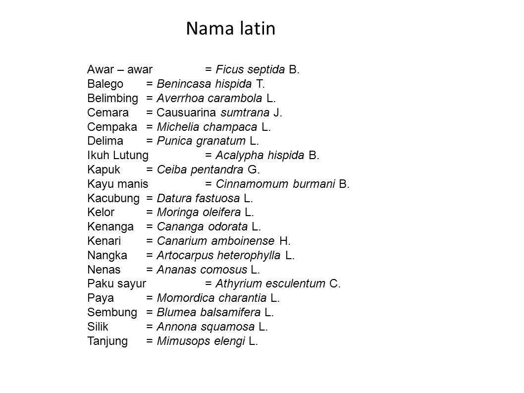 Awar – awar= Ficus septida B. Balego= Benincasa hispida T. Belimbing= Averrhoa carambola L. Cemara= Causuarina sumtrana J. Cempaka= Michelia champaca