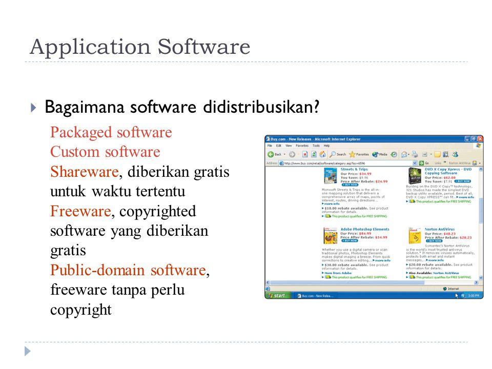 Application Software  Bagaimana software didistribusikan? Packaged software Custom software Shareware, diberikan gratis untuk waktu tertentu Freeware