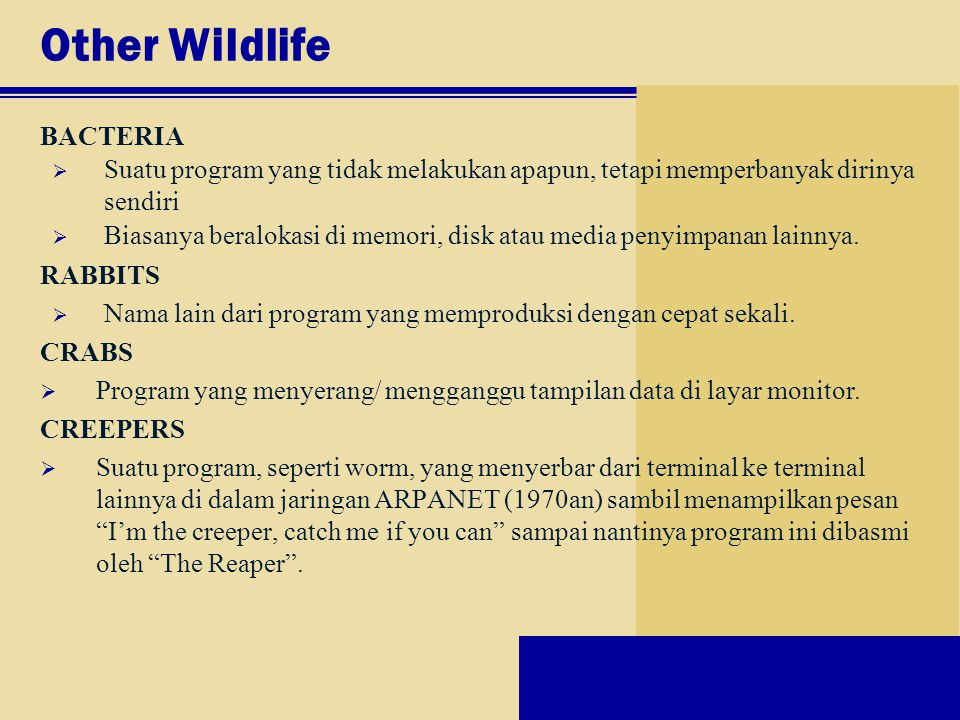 Other Wildlife BACTERIA  Suatu program yang tidak melakukan apapun, tetapi memperbanyak dirinya sendiri  Biasanya beralokasi di memori, disk atau me