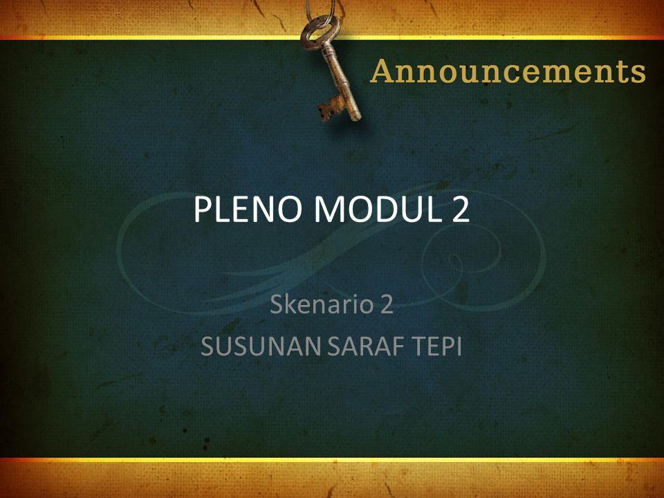 PLENO MODUL 2 Skenario 2 SUSUNAN SARAF TEPI