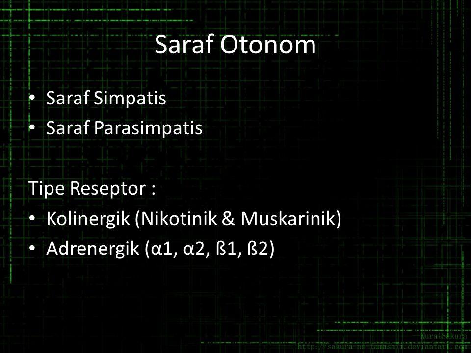 Saraf Otonom Saraf Simpatis Saraf Parasimpatis Tipe Reseptor : Kolinergik (Nikotinik & Muskarinik) Adrenergik (α1, α2, ß1, ß2)