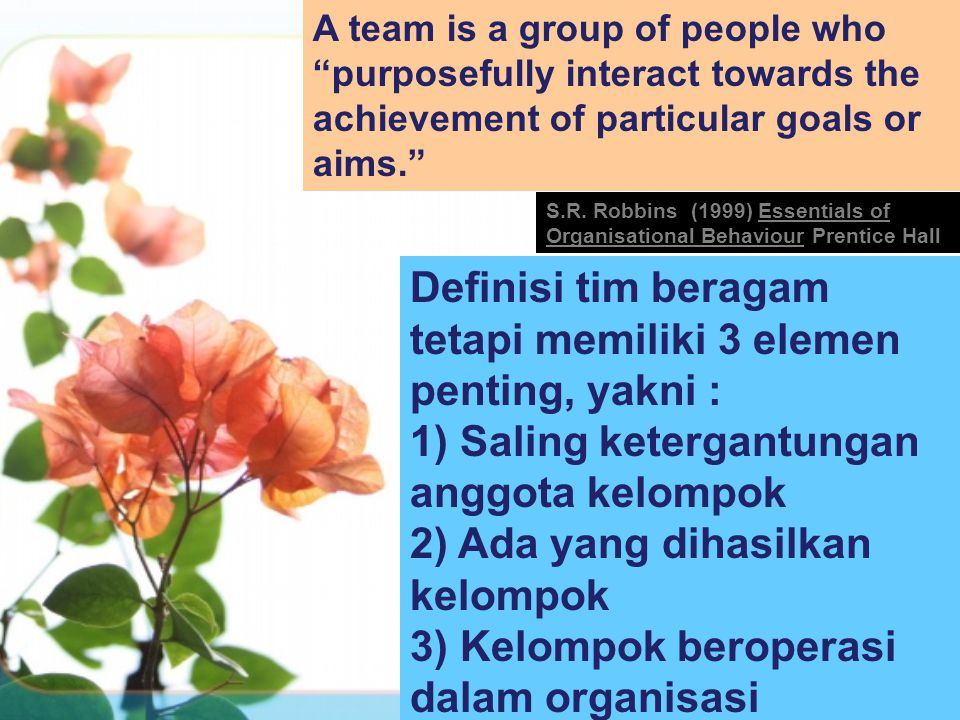 A team is a group of people who purposefully interact towards the achievement of particular goals or aims. S.R.